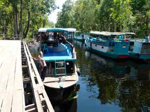 Klotok Boat Borneo