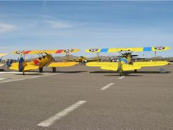 Stearman lineup at the Cactur Fly-in