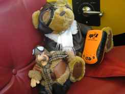 Bernard and Bear Wait for Ride in J-3 Cub
