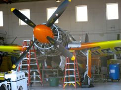 Rare Bear -- oh yea, it's highly modified (in hangar)