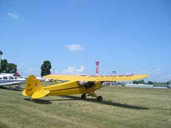 Cub in Oshkosh in Vintage Aircraft Parking