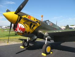 P-40 Warhawk with the Aleutian Tiger paint job.... Now that is the real deal... but...