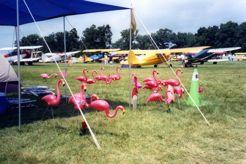 Some Exhibitors Camp at Oshkosh Too!